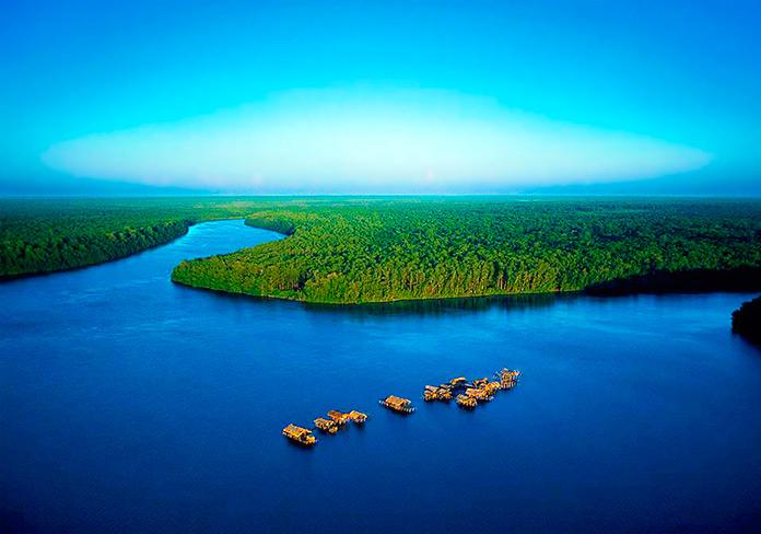 Comidas Tipicas del Estado Delta Amacuro
